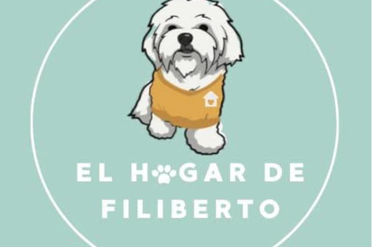 El Hogar de Filiberto: Un movimiento que busca formar familias con perros rescatados