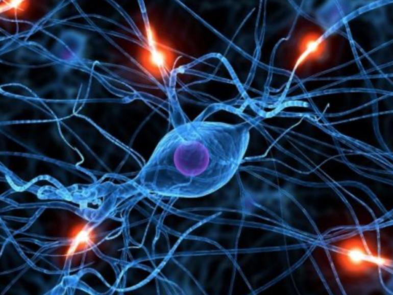 La optogenética, la tecnología que ayuda a modificar tus recuerdos